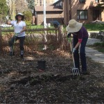Soil Preparation in North Garden