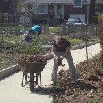 Soil Preparation in South Garden